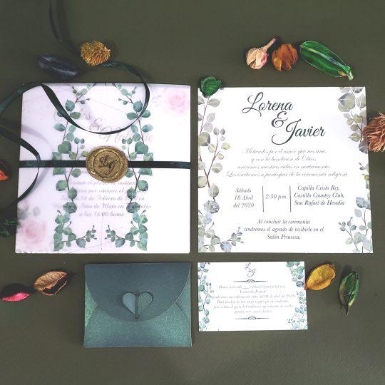 Invitación Translucent Basic