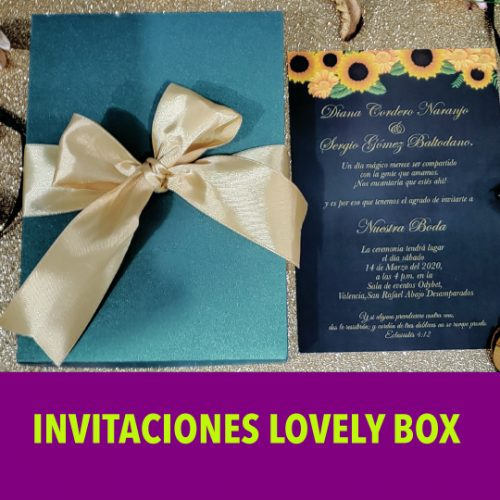 MOD LOVELY BOX e1593123443973